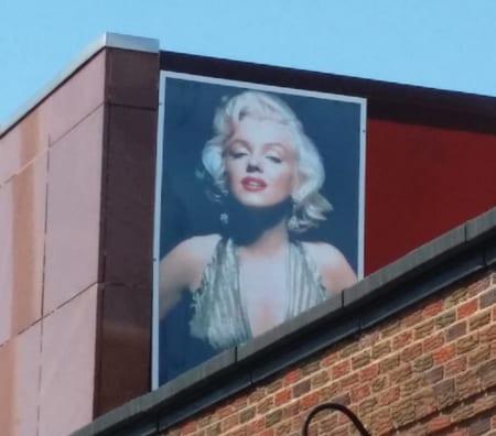 Where's Marilyn