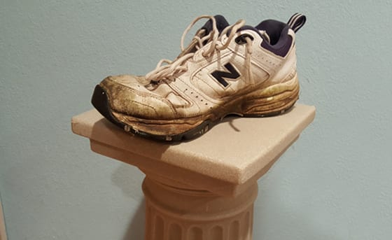 Who would you rather vote for in the Presidential Election? Hillary Clinton, Donald Trump, or a Worn-Out Tennis Shoe